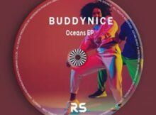 Buddynice – Idlozi Lam (Original Mix)