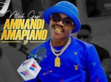 Ntosh Gazi – Sebenza ft. Mapara A Jazz & Coster Vundras