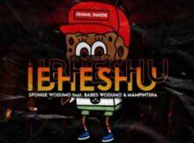 Sponge Wodumo – Ibheshu ft. Mampintsha & Babes Wodumo