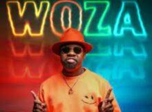 Mr JazziQ, Lady Du & Kabza De Small - Woza ft. Boohle